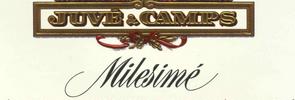Milesimé brut reserva 2010 Juve y camps