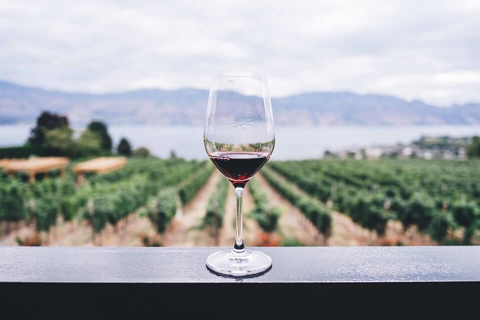 Tendencias vinícolas 2018