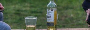 el vino y los jóvenes milenials